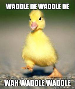 Waddle de waddle de wah waddle Duck Memes