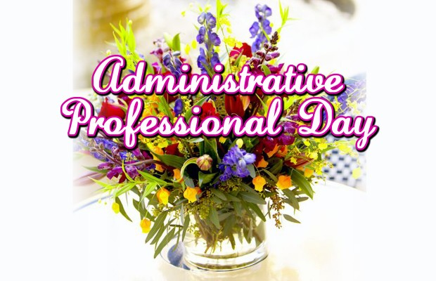Admin Day 5205