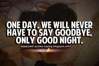 Best love Quotes one day we will never have to say goodbye