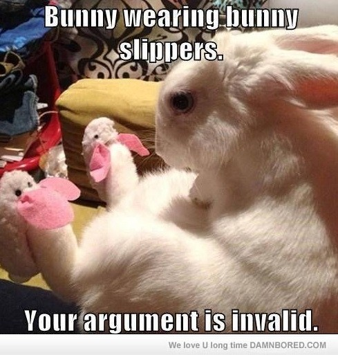 Bunny wearing bunny slippers your argument is invalid Rabbit Memes