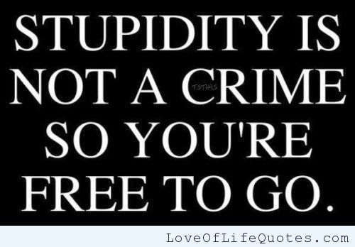 Criminal Quotes Stupidity is not a crime so you're free to go