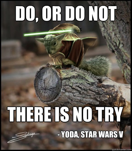 Do or do not there is no try Squirrel Memes do or do not there is no try squirrel memes picsmine
