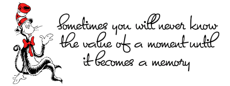 Dr Seuss Quotes sometimes you will never know the value of a moment