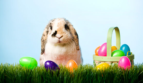 Happy Easter Wishes Images 40117