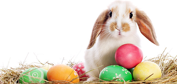 Happy Easter Wishes Images 40131