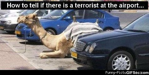 How to tell if there is a terrorist at Terrorists Meme