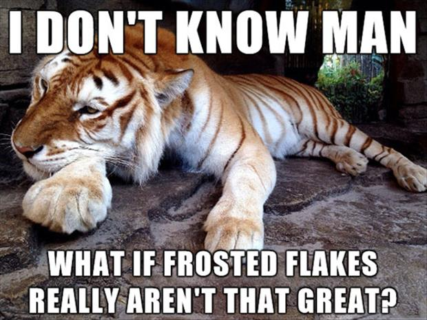 I don't know man what if frosted Tiger Meme