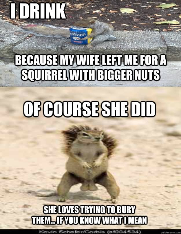 I drink because my wife left me for a squirrel with Squirrel Memes