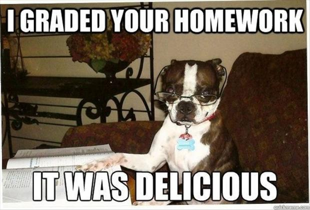 I graded your homework it was Pet Memes