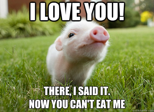 I love you there i said it now can't Pigs Meme