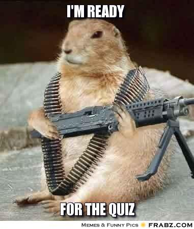 I'm ready for the quiz Squirrel Memes