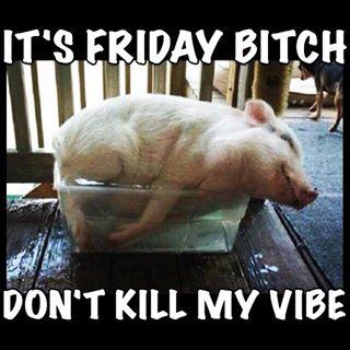 It's Friday bitch don't kill my vibe Pigs Memes