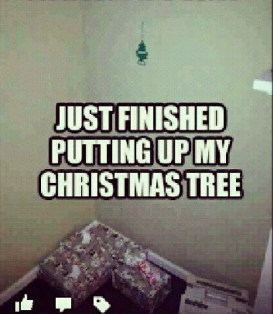 Just finished putting up my Christmas tree Memes