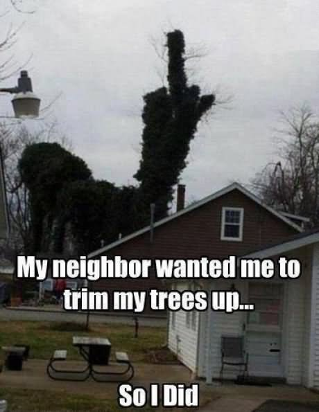 My neighbor wanted me to trim my trees up so i did Tree Memes