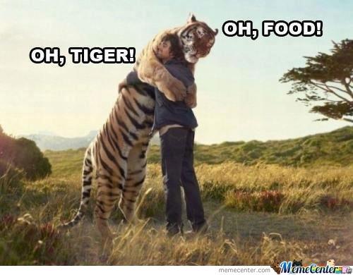 Oh tiger oh food Tiger Meme