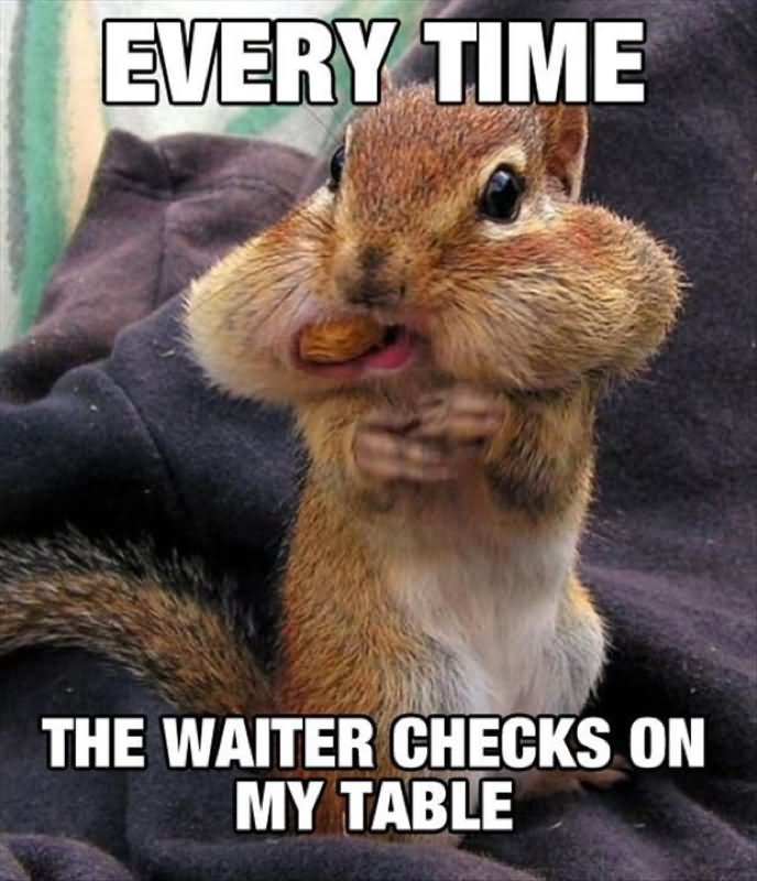 Pigs Meme Every time the waiter checks on my table