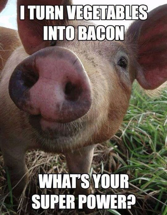 Pigs Meme I turn vegetables into bacon what's your super power