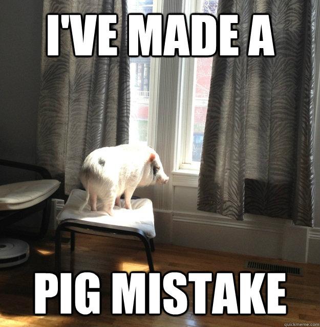 Pigs Meme I've made a pig mistake