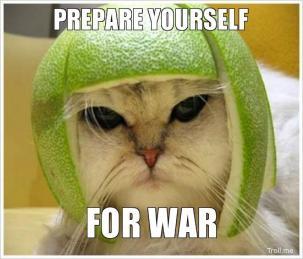Prepare yourself for war War Meme