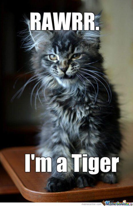 Rawrr I'm a tiger Meme
