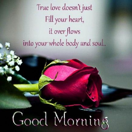 Small Good Morning Love Quotes