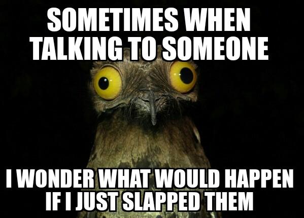 Sometimes when talking to someone i wonder Weird Meme