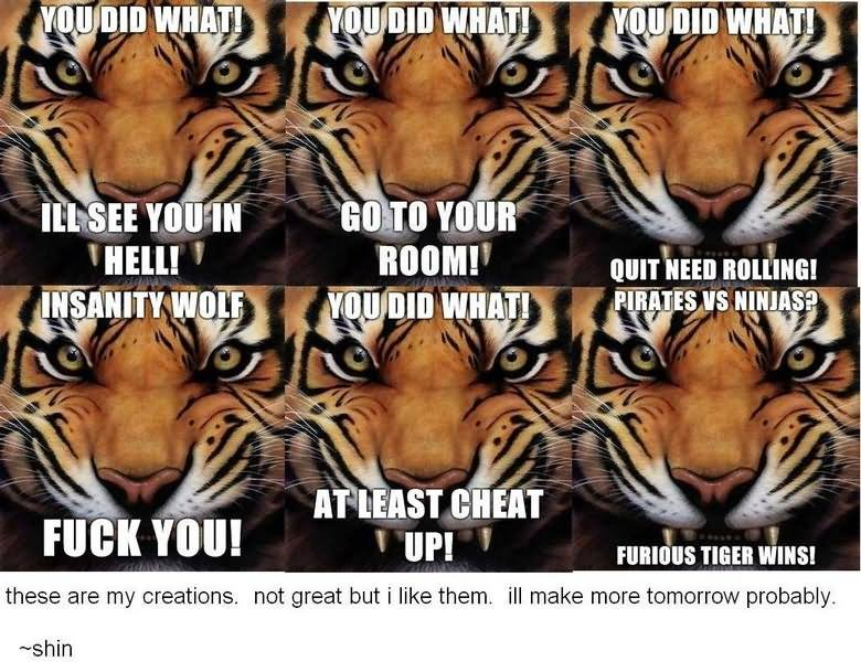 Tiger Meme You did what ill see you in hell