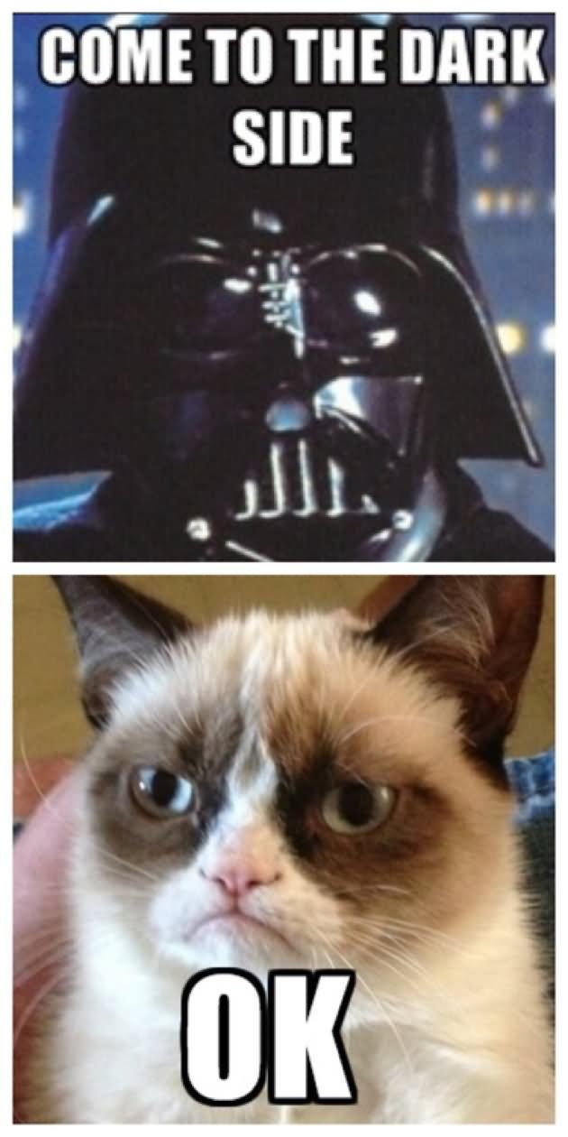 War Meme come to the dark side ok
