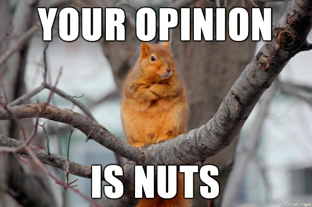 Your opinion is nuts Squirrel Memes