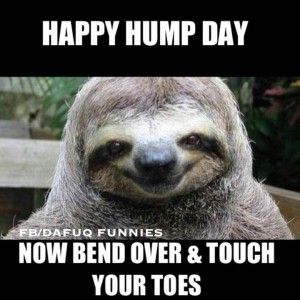 Happy hump day now bend over touch your toes Hump Day Meme