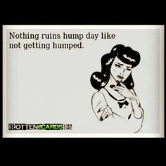 Dirty Hump Day Meme Nothing ruins hump day like not getting humped