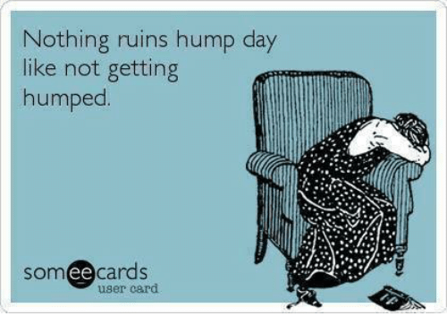 Hump Day Meme Dirty Nothing ruins hump day like not getting humped