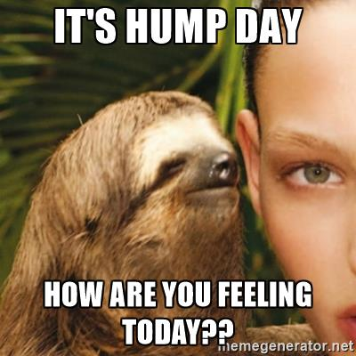 Hump Day Meme Dirty it's hump day how are you feeling today