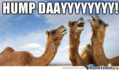 Hump Day Meme Hump dayyyyyyy