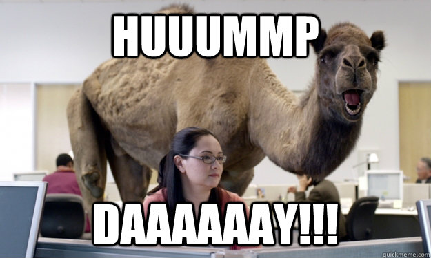 Hump Day Meme Huuump daaaaaaaay