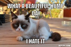 Hump Day Meme What a beautiful hump day