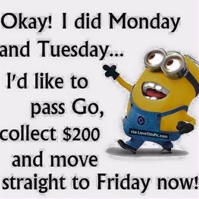 Hump Day Work Meme Okay i did monday and tuesday id 39 amusing hump day work memes images & pictures picsmine