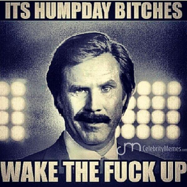 Hump Day Work Meme it's hump day bitches wake the