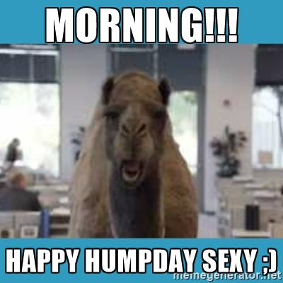 Morning happy humpday sexy Hump Day Meme