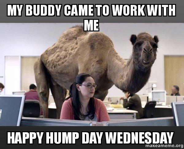 My buddy came to work with me Wednesday Work Meme