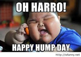 Oh harro happy hump day Hump Day Work Meme