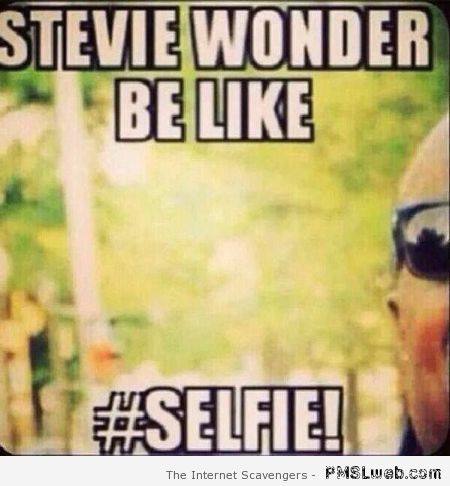 Stevie wonder be like selfie Hump Day Meme