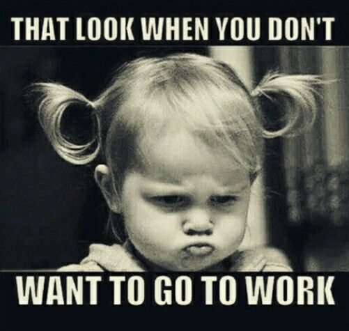 That look when you don't want to go to work Hump Day Work Meme