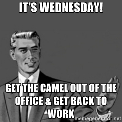 Wednesday Work Meme it's Wednesday! get the camel out of the office