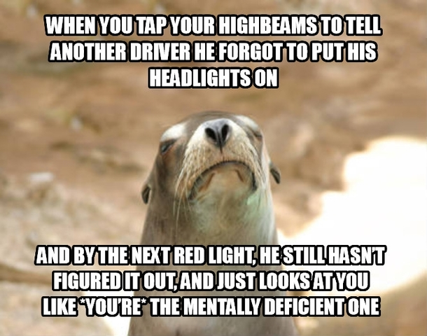 Wednesday Work Meme when you tap your high beams to tell