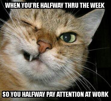 Wednesday Work Meme when you're halfway thru the week so you
