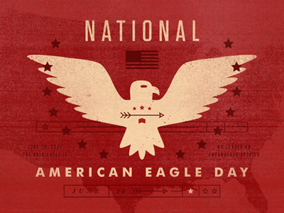 Happy National American Eagle Day Greetings Message Image