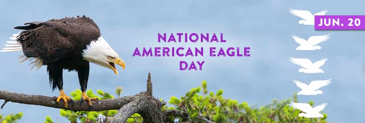 National American Eagle Day June 20