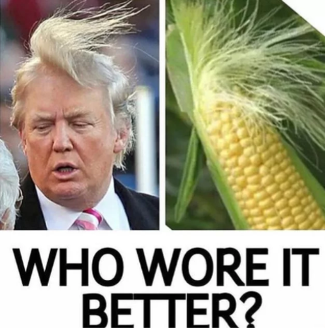 Donald Trump Memes