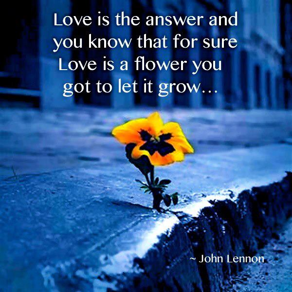 John Lennon Quotes Sayings 03